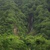 山林の中で流れる滝