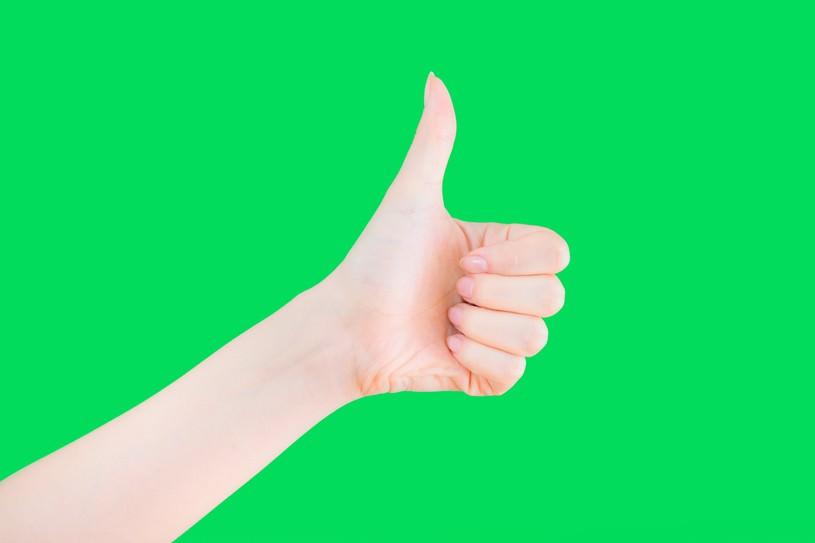 Green iine2 thumb 815xauto 18642