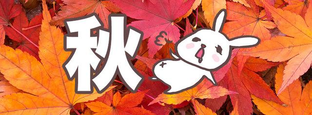 秋といえば○○?あなたの作品を彩る秋の写真素材をまとめてみました