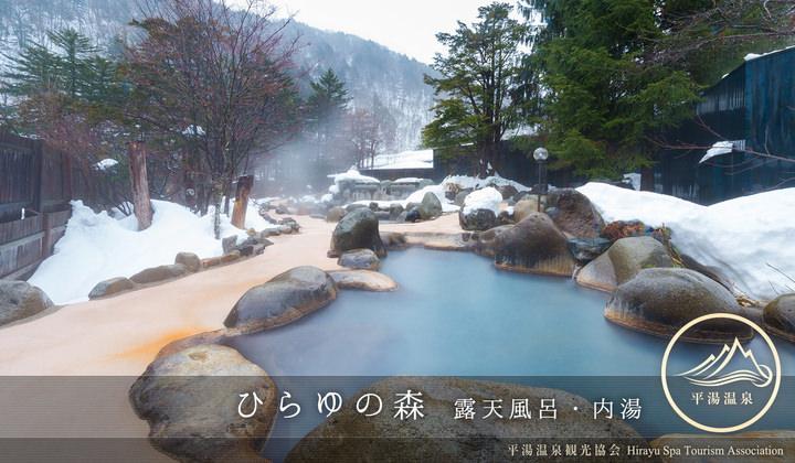 ハイキングや登山の帰りに気軽に立ち寄れる源泉かけ流しの大浴場。ひらゆの森