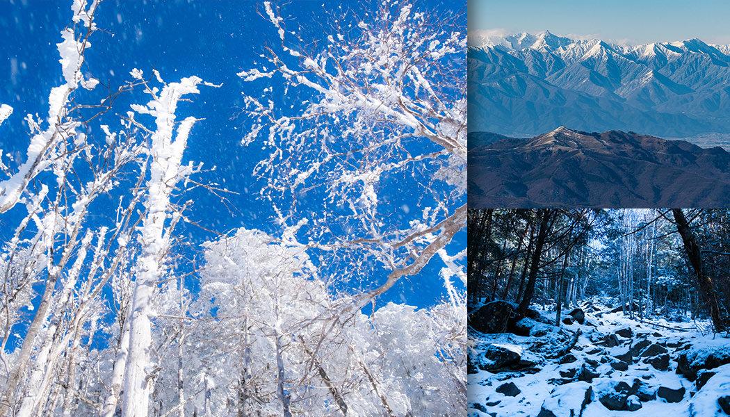 樹氷や八ヶ岳ブルーなど、厳冬期の蓼科山
