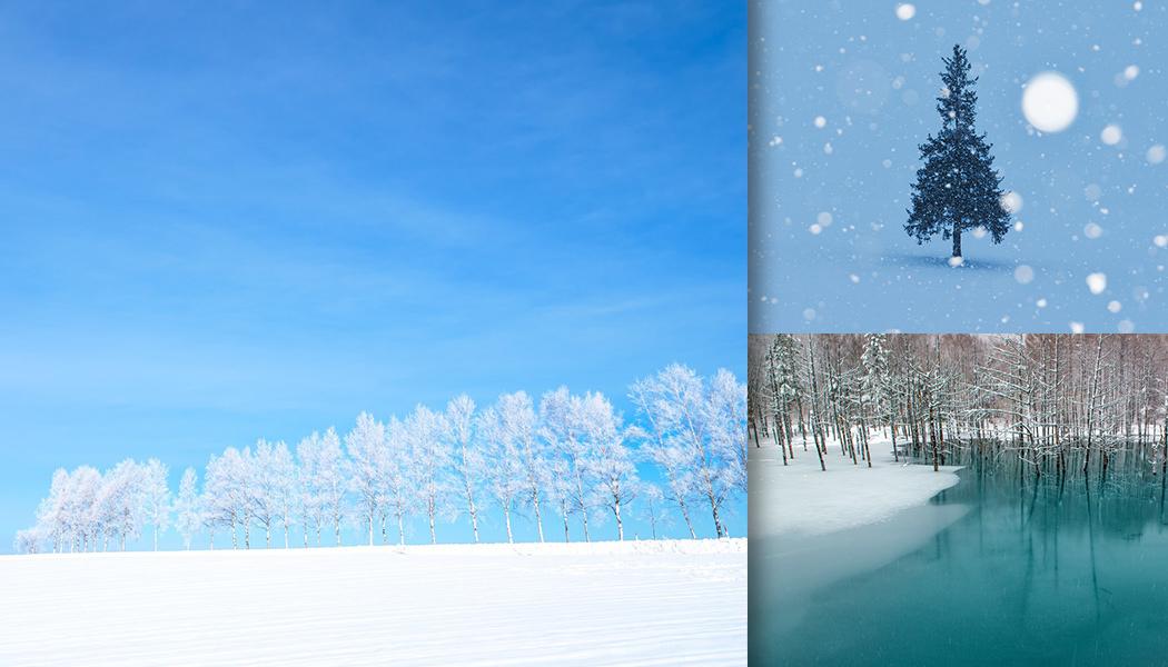 冬の季節! 厳冬期の山々や雪が降り注ぐ樹氷などの様子