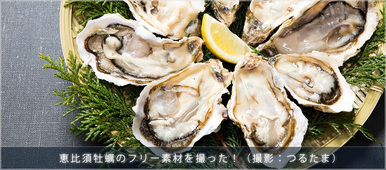 福岡の恵比須牡蠣18キロをフリー素材として撮影しました