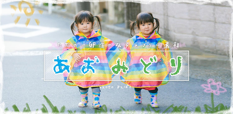 フリー素材ツインズ「あおみどり」(2歳)