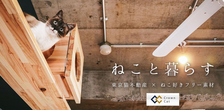 ねこ好き。ねこと暮らす。東京猫不動産コラボ