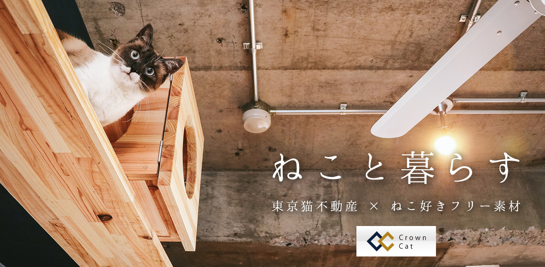 東京猫不動産の物件