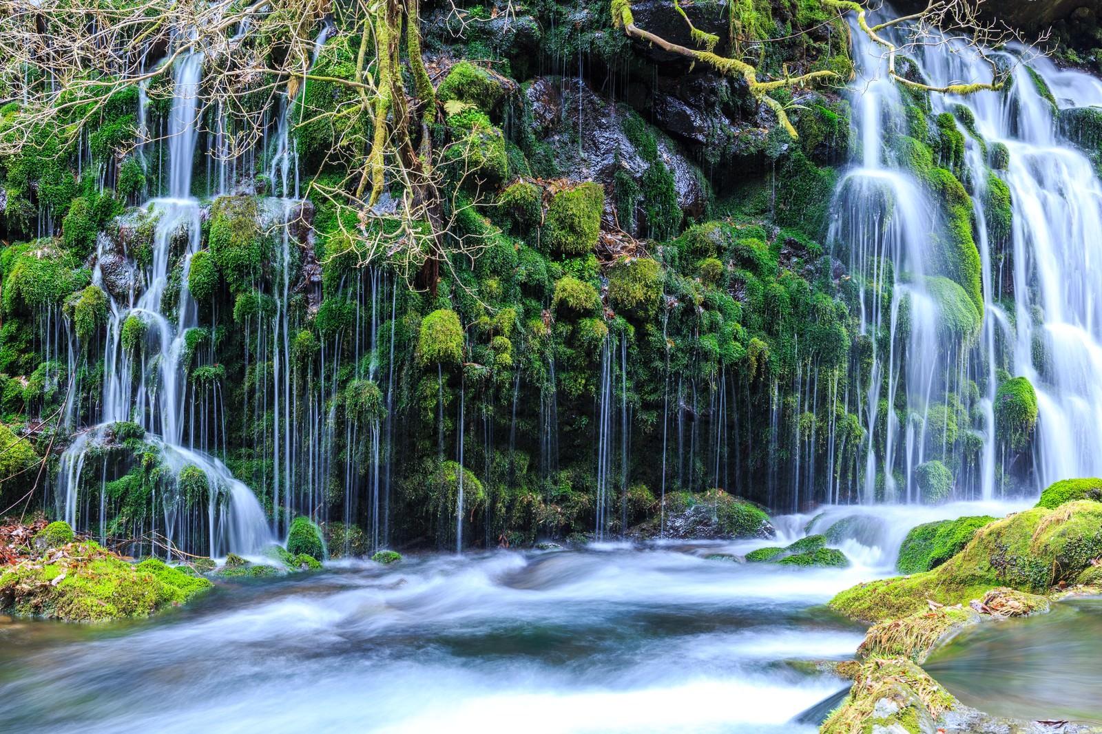 「元滝伏流水元滝伏流水」のフリー写真素材を拡大