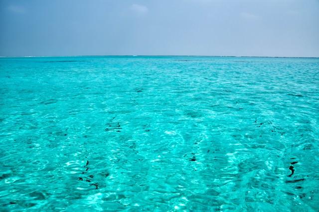美しいエメラルドの海の写真