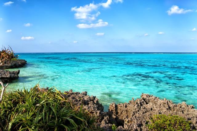 サンゴ礁の海の写真