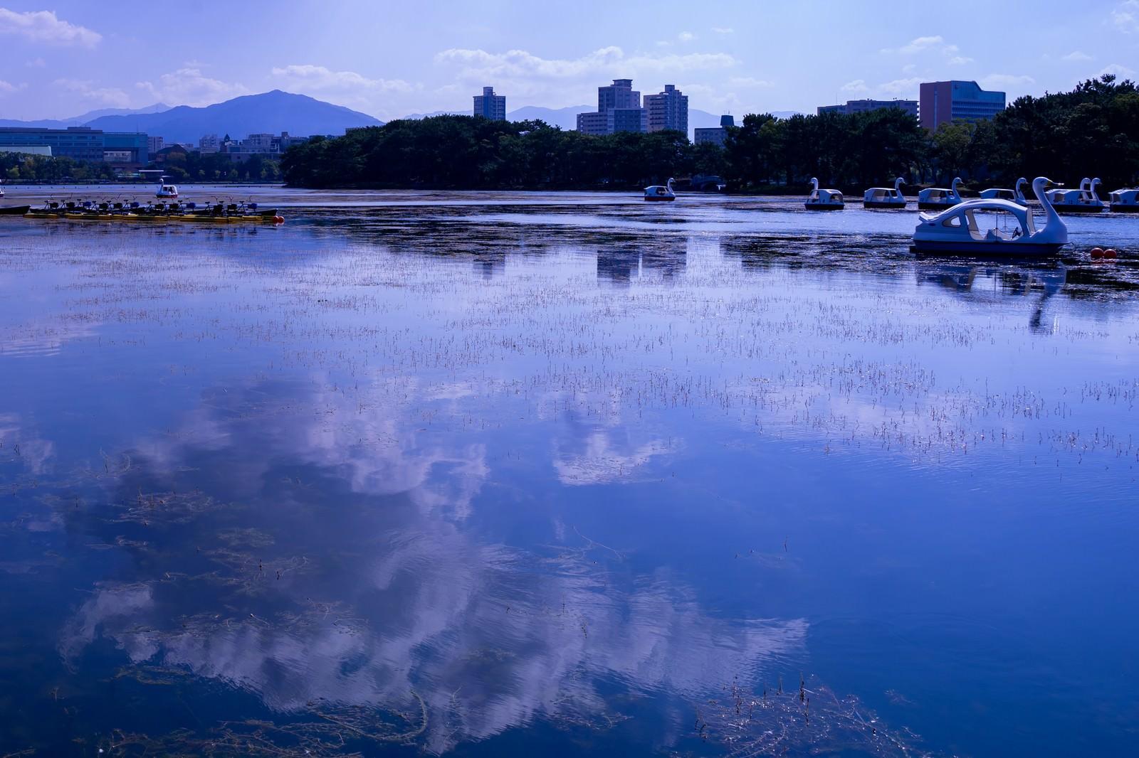 「湖面に映る青空とスワンボート」の写真