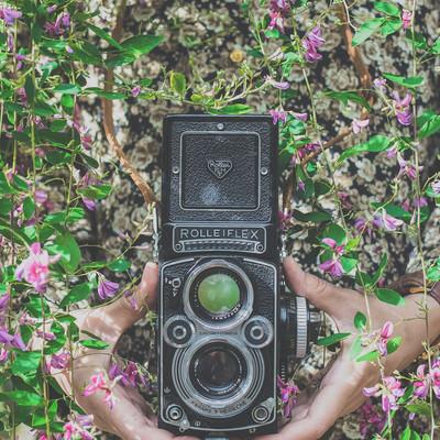 「ローライフレックスのカメラを持つ女性の手」の写真素材