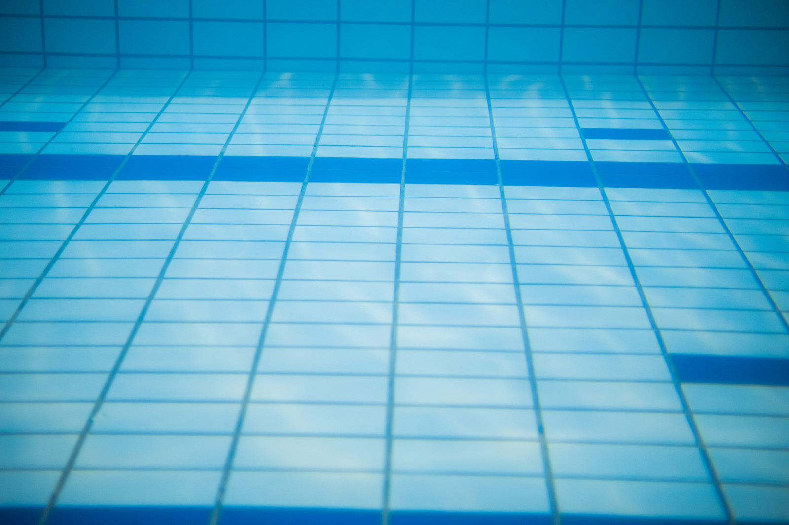 「プールの中」の写真