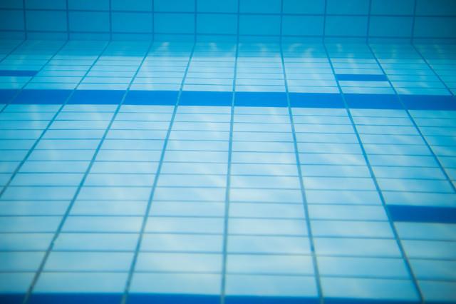 プールの中の写真