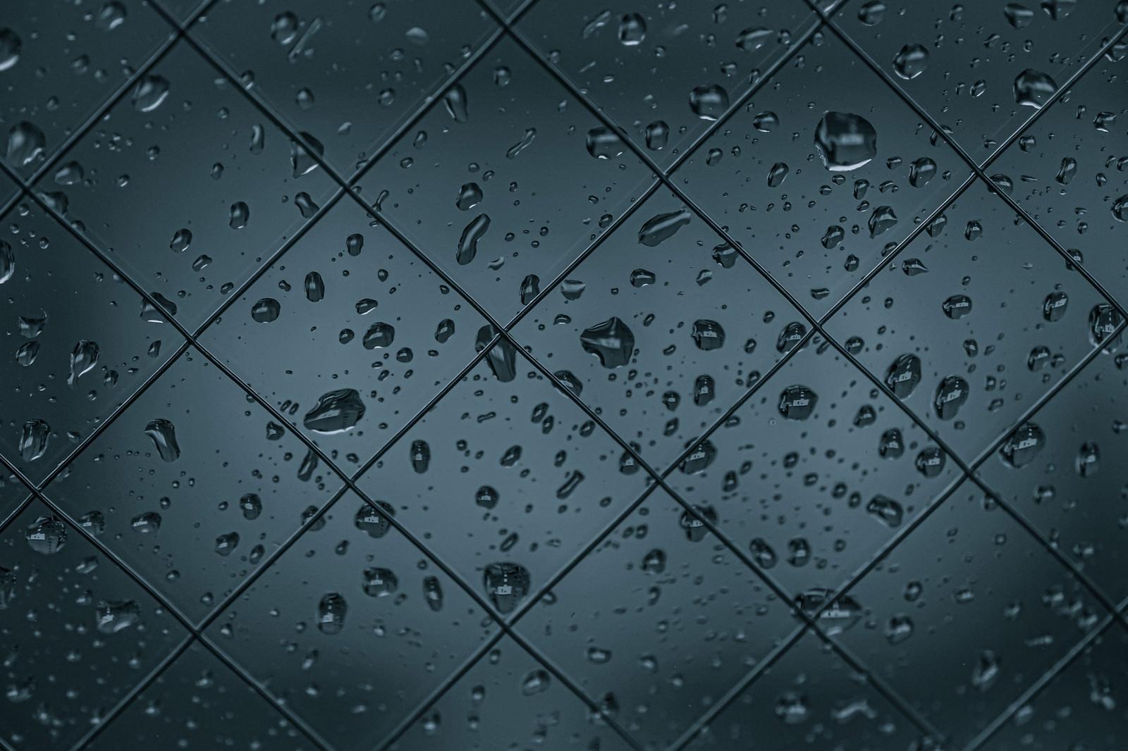 「ワイヤーの窓と水滴」の写真