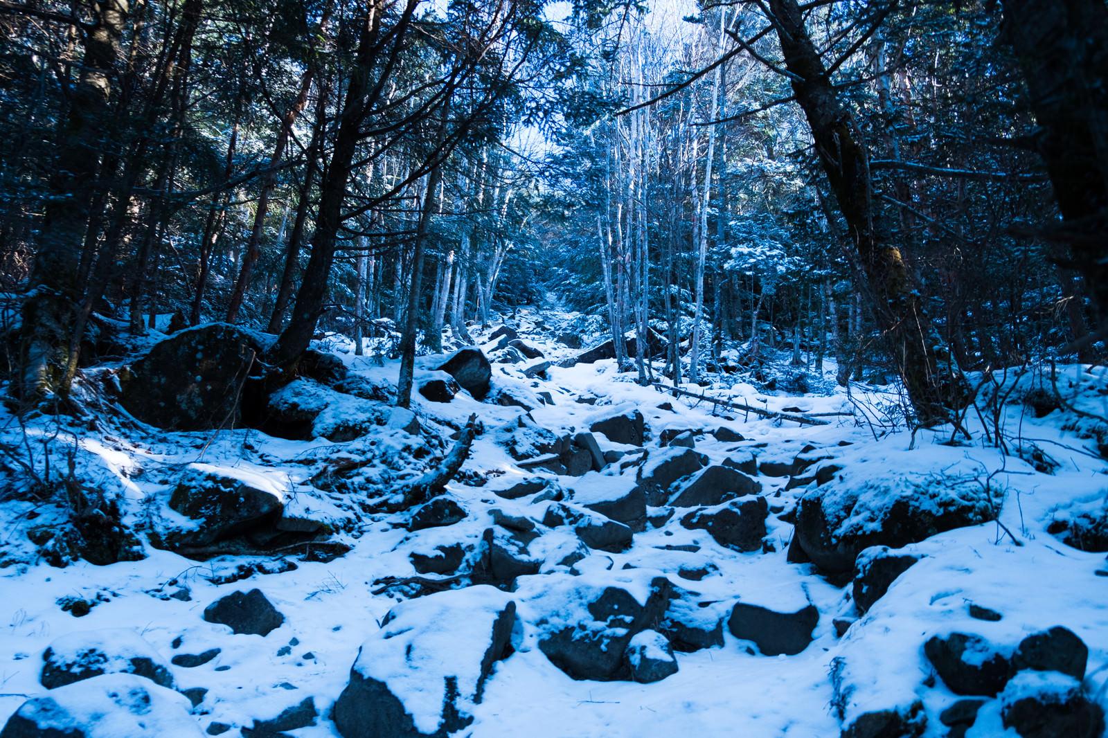 「冬の蓼科山(たてしなやま)登山道冬の蓼科山(たてしなやま)登山道」のフリー写真素材を拡大