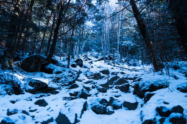 「冬の蓼科山(たてしなやま)登山道」のフリー写真素材