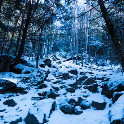 冬の蓼科山(たてしなやま)登山道の写真