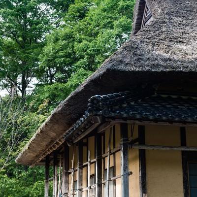 「茅葺屋根と新緑」の写真素材