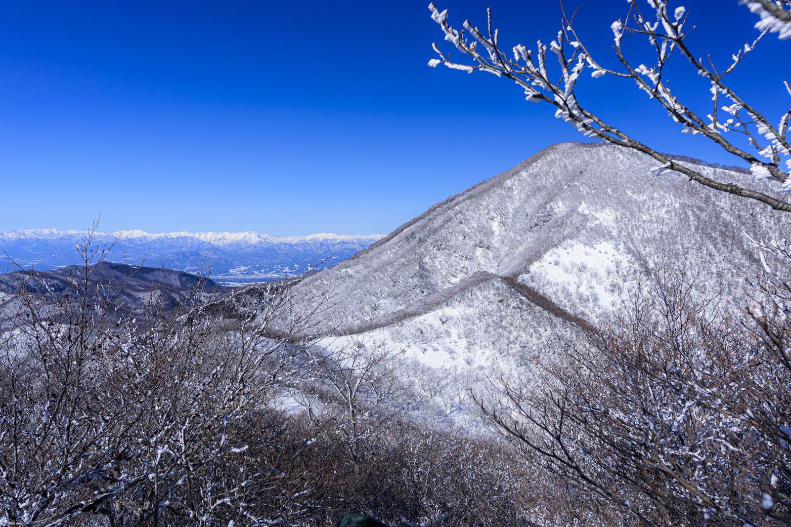 「赤城山とアルプスの山々」の写真