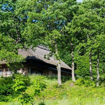 「新緑に包まれる茅葺き屋根の古民家」の写真素材