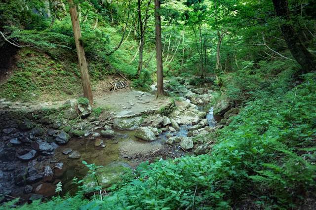 山深い岩井滝へと続く道の写真