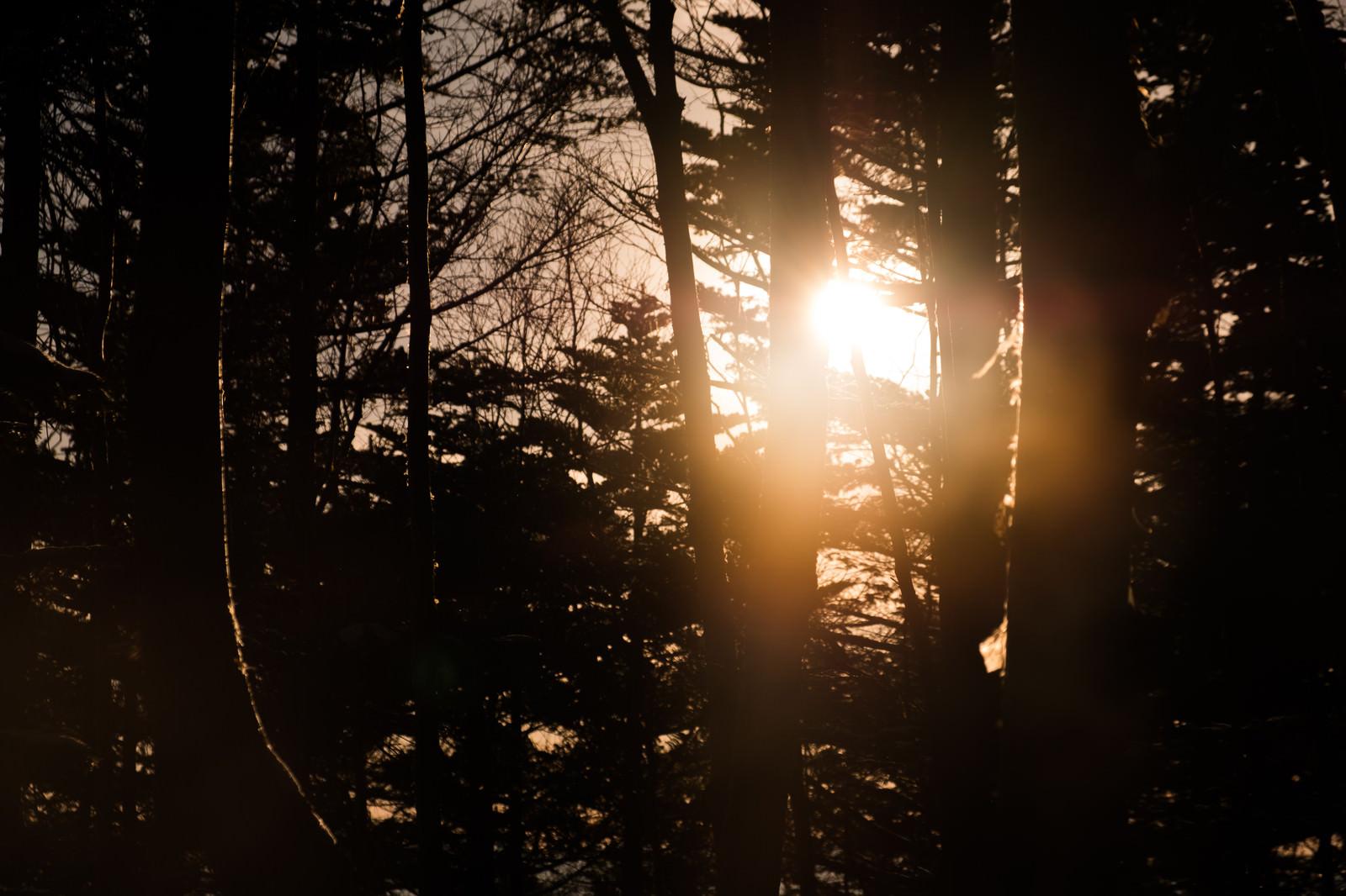 「哀愁漂う冬山の夕暮れ」の写真