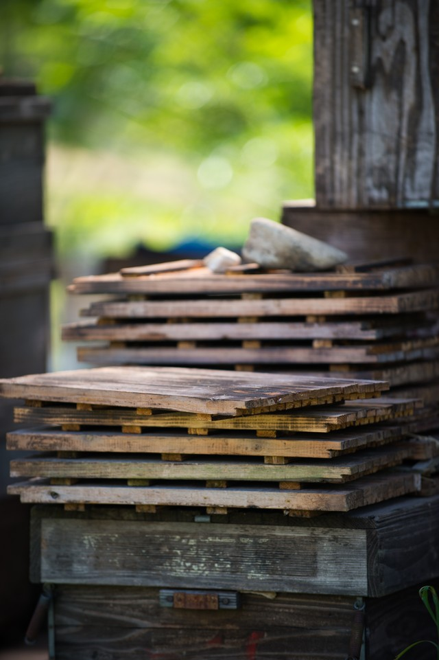 蜜蜂の巣箱の蓋の写真