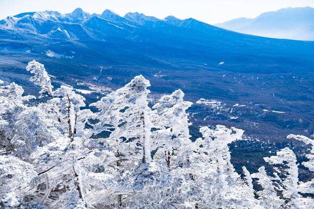 霧氷と八ヶ岳連峰と茅野市街の写真