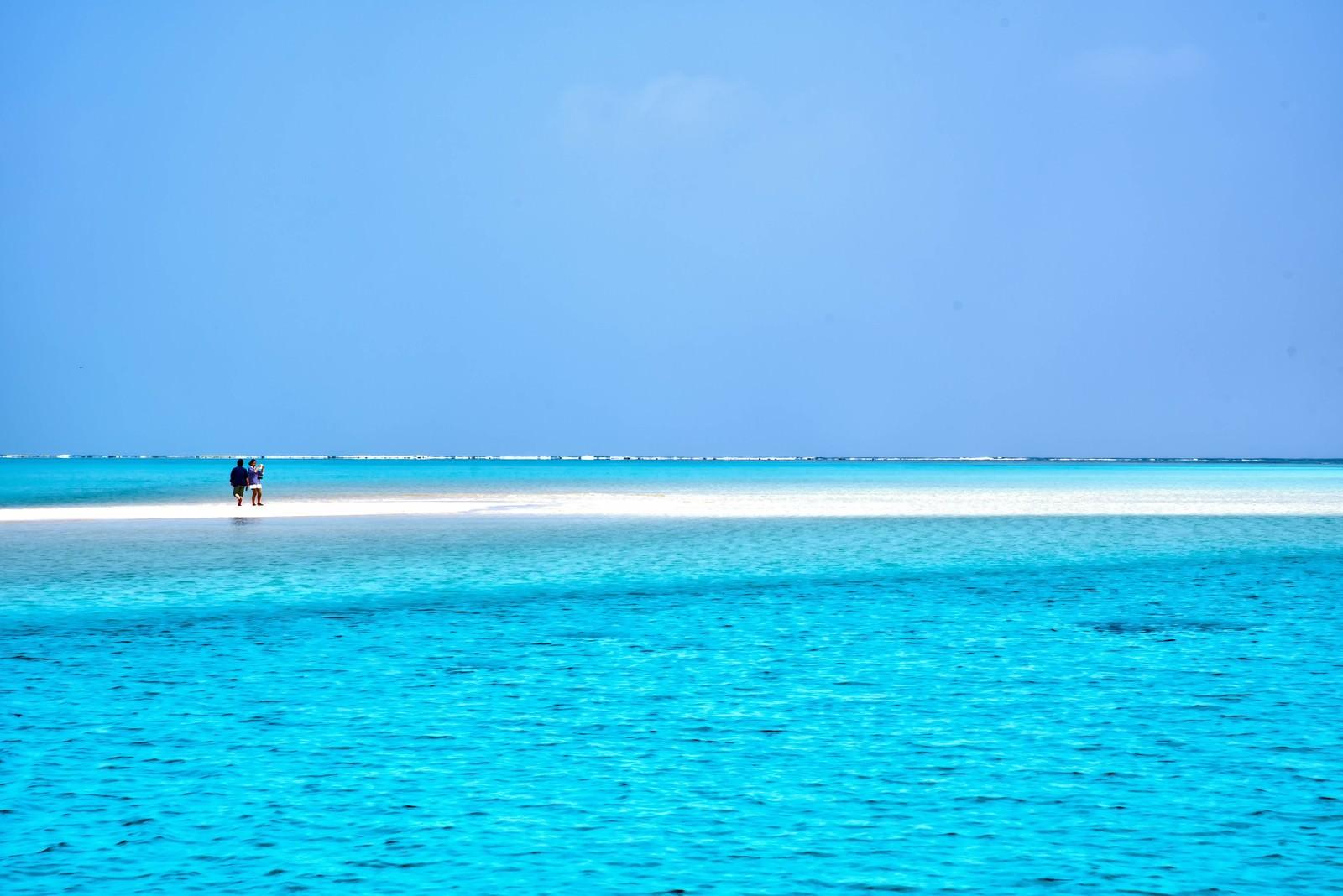 「百合ヶ浜に立つ観光客」の写真