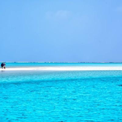 百合ヶ浜に立つ観光客の写真