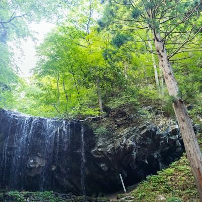 岩井滝と6月中旬の緑の写真