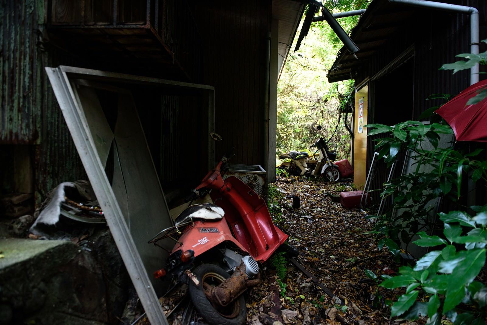 「捨てられたバイクと家」の写真