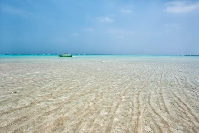 百合ヶ浜に近づく船の写真
