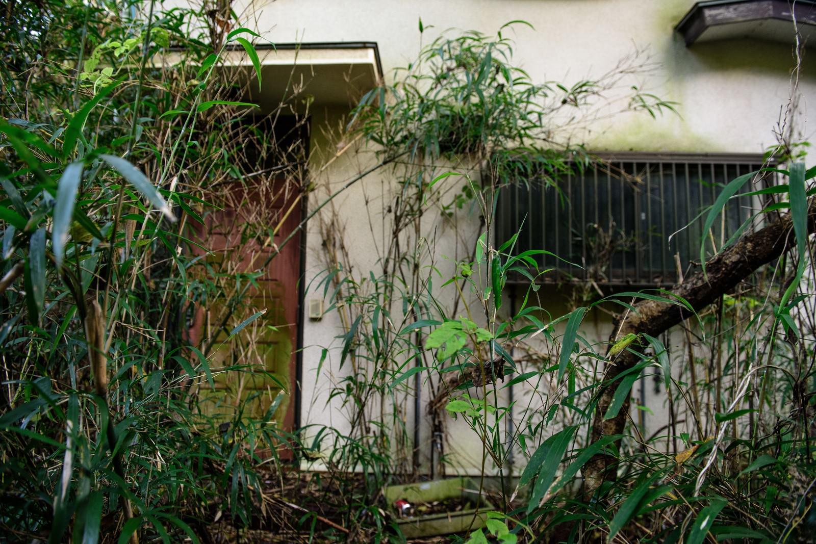 「不気味な集落の家」の写真