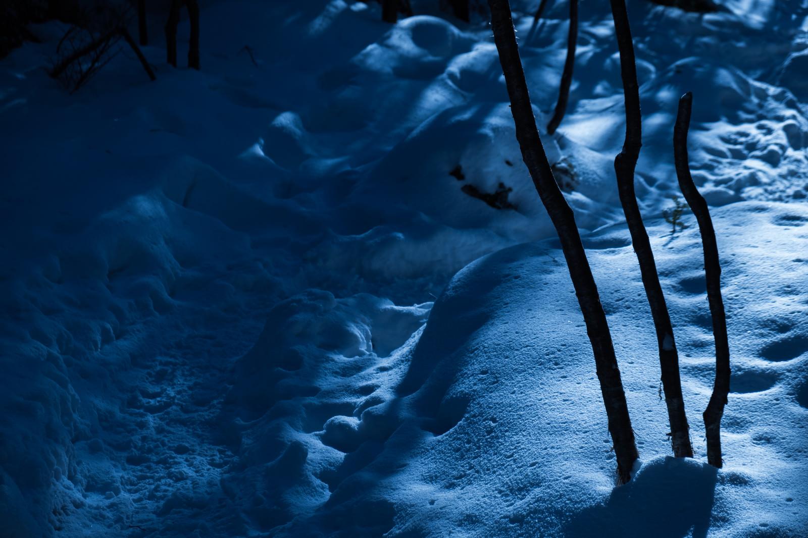 「美しさと不安が入り交じる夜の冬山登山道」の写真