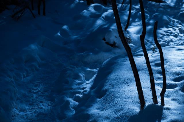 「美しさと不安が入り交じる夜の冬山登山道」のフリー写真素材
