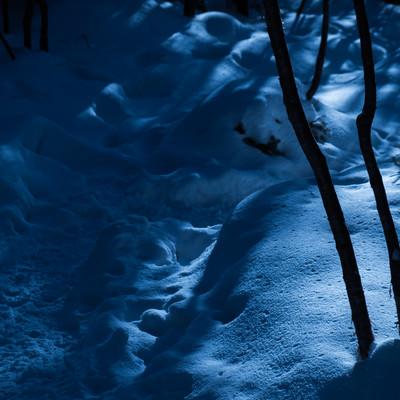 美しさと不安が入り交じる夜の冬山登山道の写真