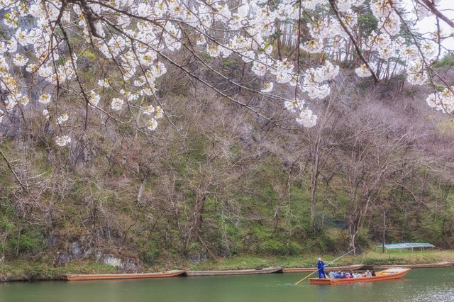 猊鼻渓(げいびけい)の舟下りの写真