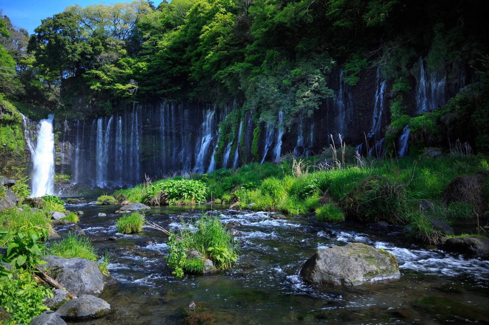 「白糸の滝白糸の滝」のフリー写真素材を拡大
