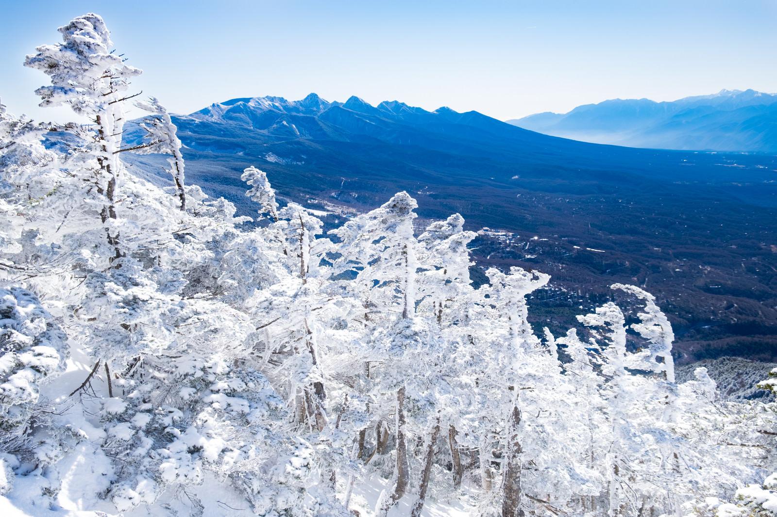 「強風により作られた霧氷のエビの尻尾強風により作られた霧氷のエビの尻尾」のフリー写真素材を拡大