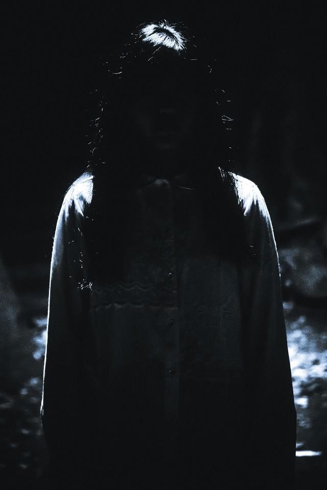 「見ると睨み殺される恐怖」のフリー写真素材