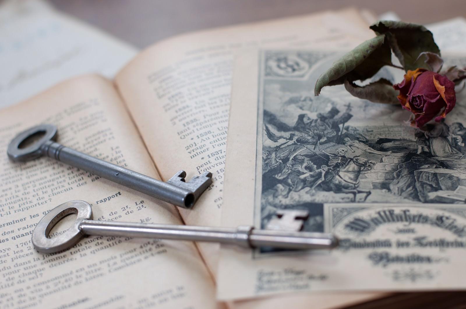 「朽ちたバラと古い鍵」の写真