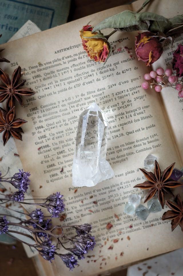 洋書の上の水晶とドライフラワーの写真