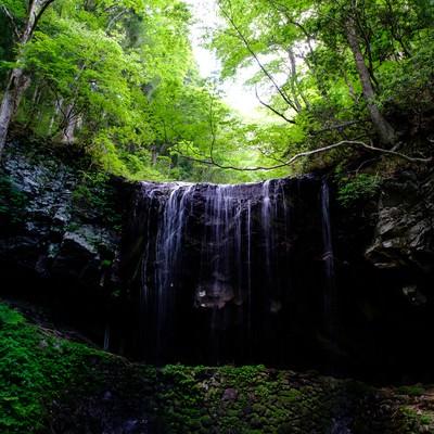 「鏡野町岩井滝」の写真素材