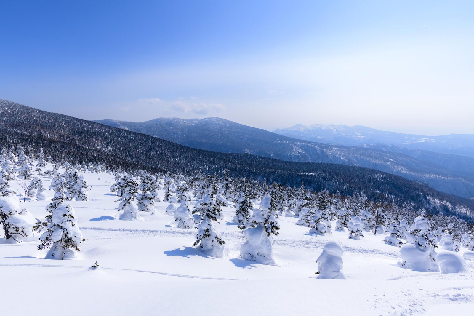 「樹氷の西吾妻山から見る安達太良山(あだたらやま)」の写真