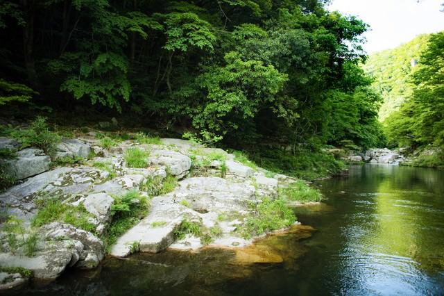 国指定の名勝、奥津渓の写真