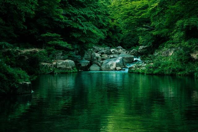 メディアのロケーション地にも選ばれる奥津渓の景観の写真