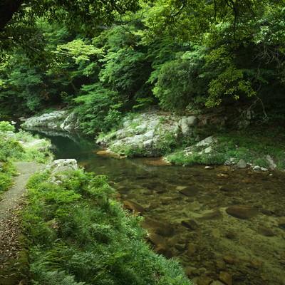 「新緑の奥津渓も美しい」の写真素材