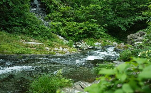 渓谷を流れる川の流れの写真