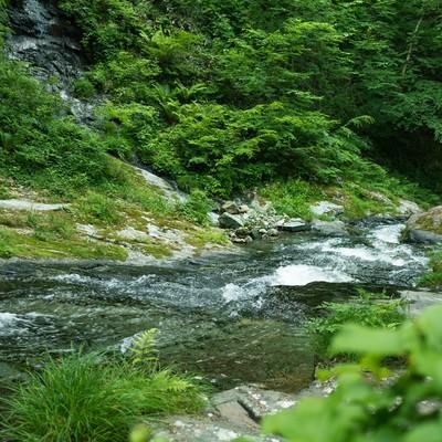 「渓谷を流れる川の流れ」の写真素材